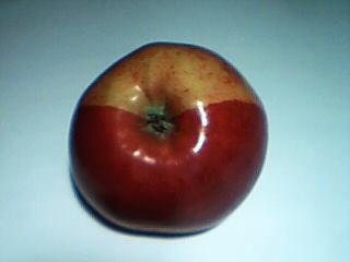 apple-4-003.jpg