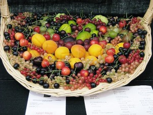 Prize winning 'Basket of fruit'