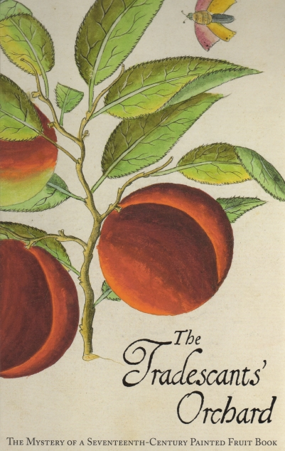 Tradescants' Orchard by Juniper and Grootenboer (2013)
