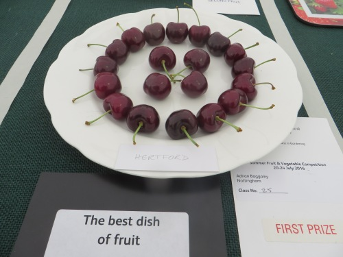 'Best in Show', RHS Tatton Park Show July 2016; Hertford cherries
